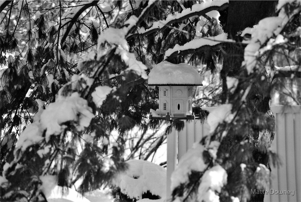 winter birdhouse by Matte Downey