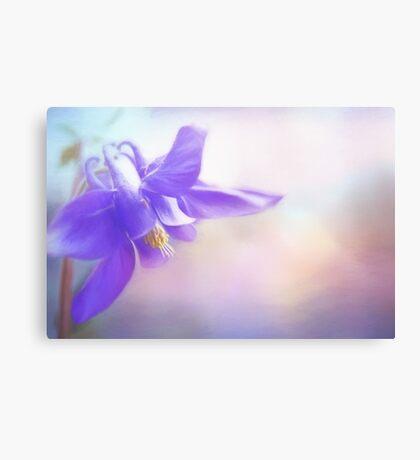 Painted Purple Columbine Canvas Print