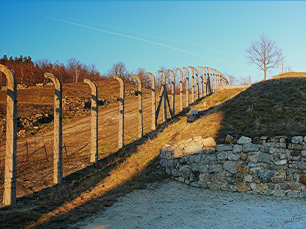 concentration camp fence by Marc-Pierre Lubas