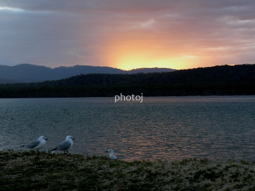 photoj Tas Bakers Beach, Sunrise by photoj