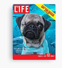 Pee Wee Pug Life Magazine Canvas Print