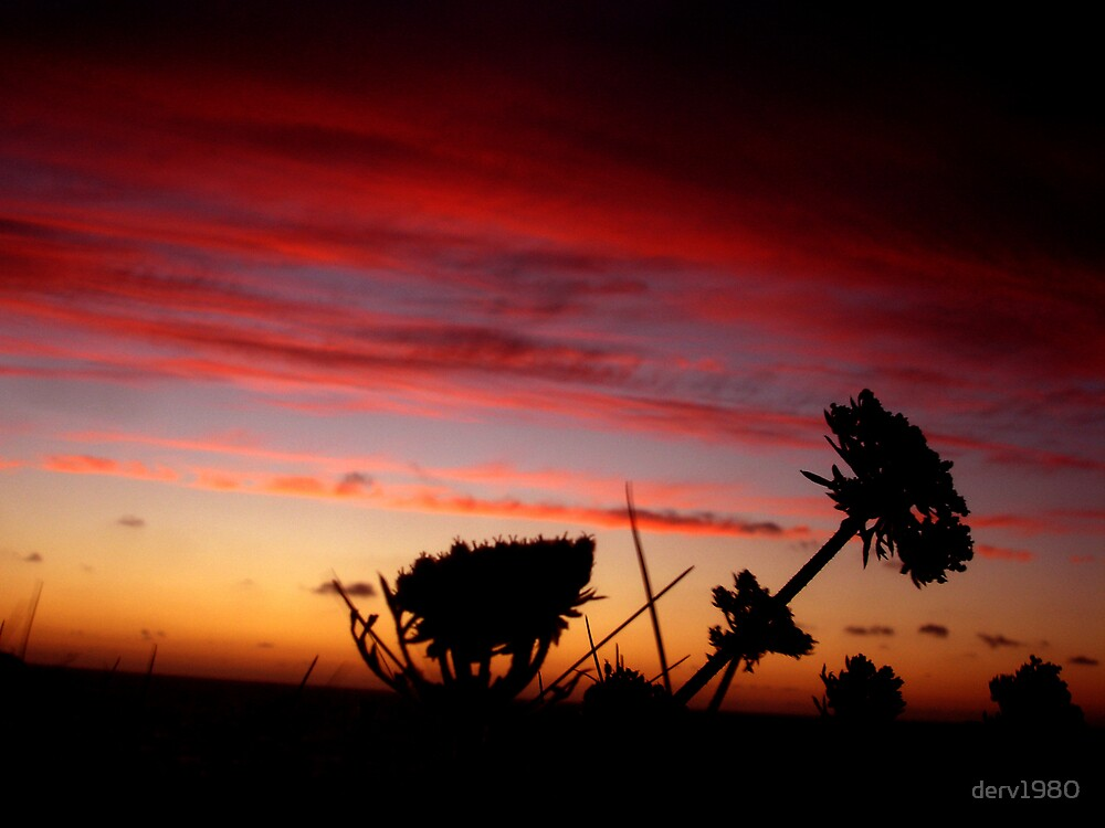 Sunset at Port Gaverne, Cornwall by derv1980