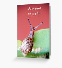"""Just want to say Hi..."" Greeting Card"