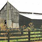Black Barn by ahedges