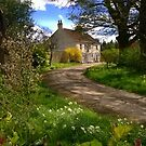 An English Spring Day, Piercebridge, County Durham, England by Ian Alex Blease