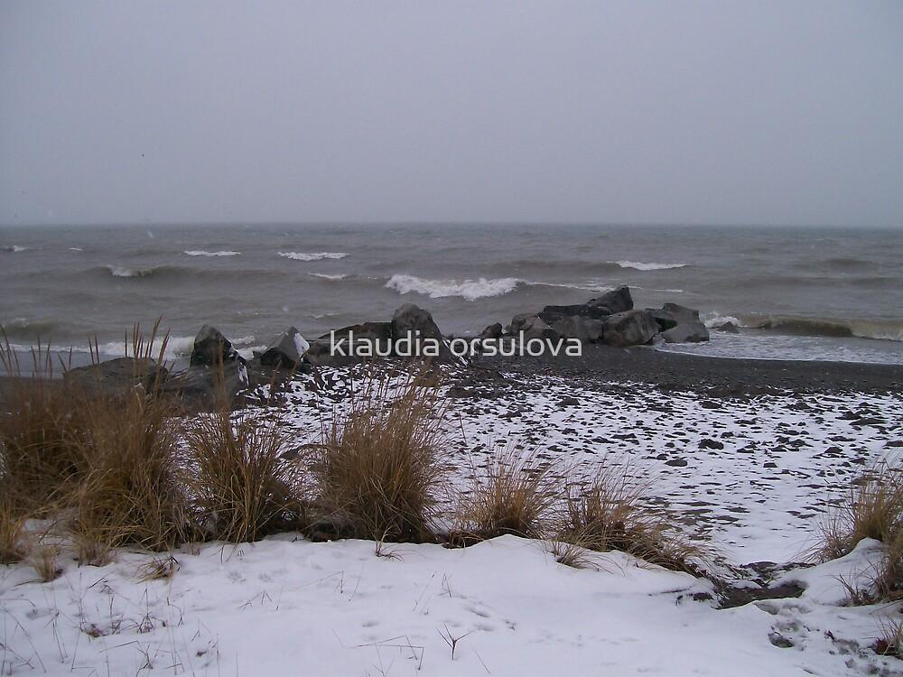 winter by klaudia orsulova