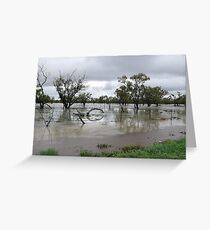 A Land of Flooding Rain Greeting Card