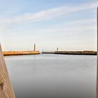 Whitby harbour by Mike Higgins