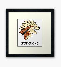 Starkanine house Framed Print
