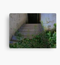 The Door To Every Where Canvas Print