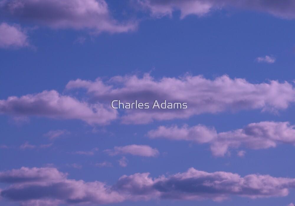 Imagine by Charles Adams