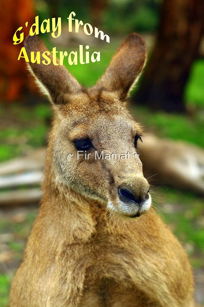 """""""G'day from Australia"""" by ~ Fir Mamat ~"""