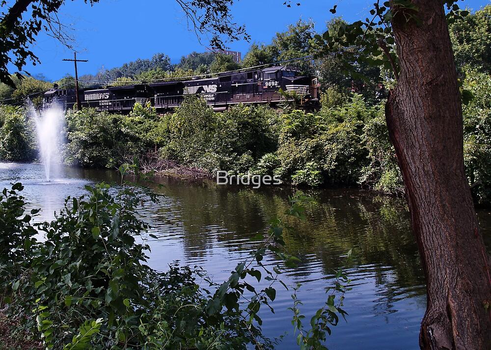 Along The Lehigh by Bridges