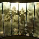 Window Lines by brilightning