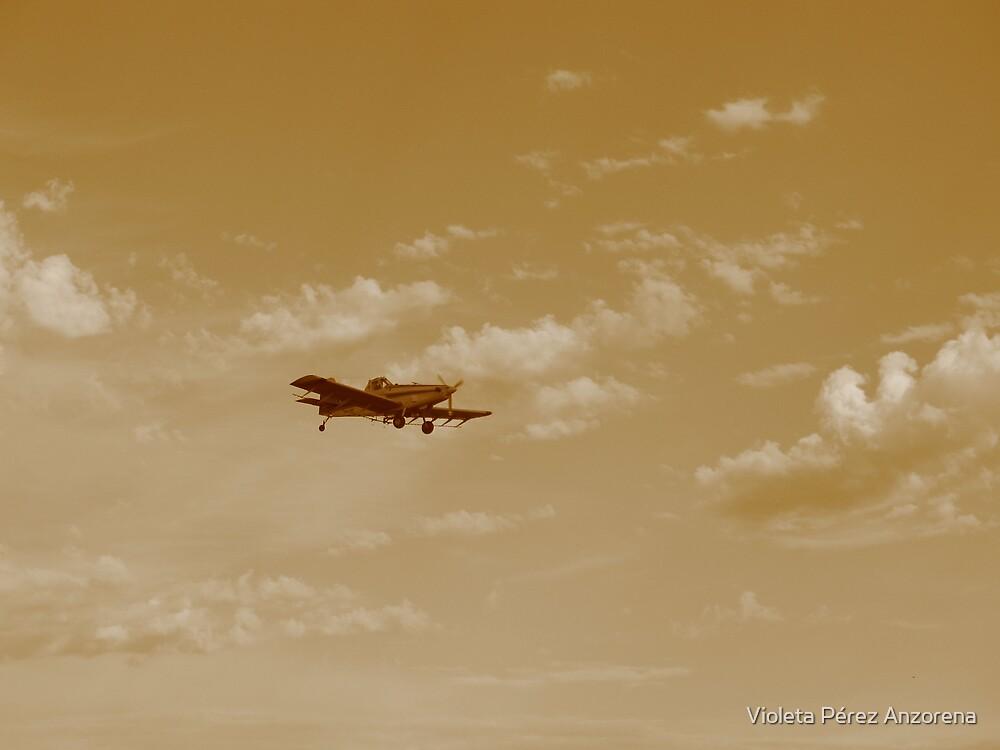 """""""Aeroplane"""" by Violeta Pérez Anzorena"""