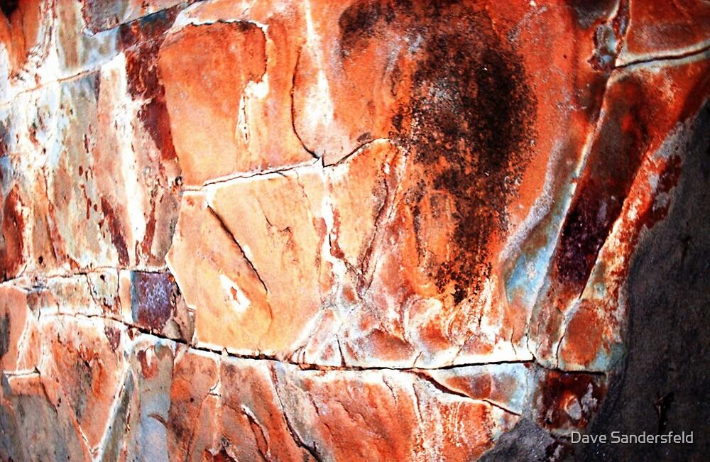 Abstract Rock Fish by Dave Sandersfeld