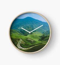Tea Plantation, Malaysia. Clock