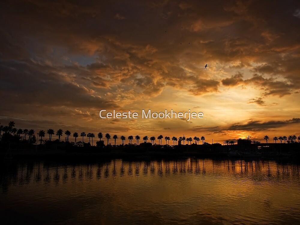 Sunset Palms at Rainbow Harbor by Celeste Mookherjee