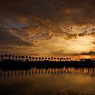 Sonnenuntergang Palmen am Rainbow Harbor von Celeste Mookherjee