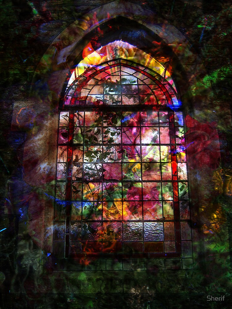 Stained Glass by Sherif