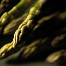 Asparagus by jaker5000
