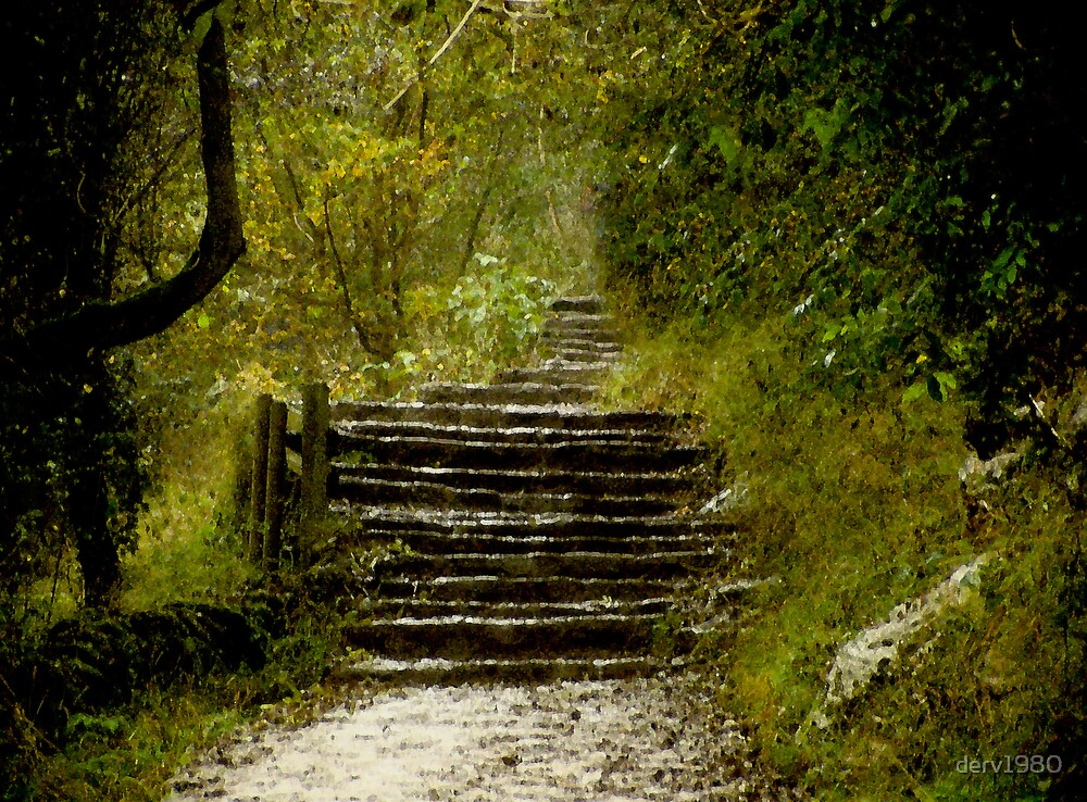 Steps on the Dove Dale Trail in Derbyshire by derv1980