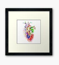 Colourful Heart Framed Print