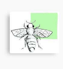 Bee- green Canvas Print