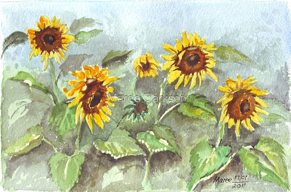 Sunshine in the rain by Maree Clarkson