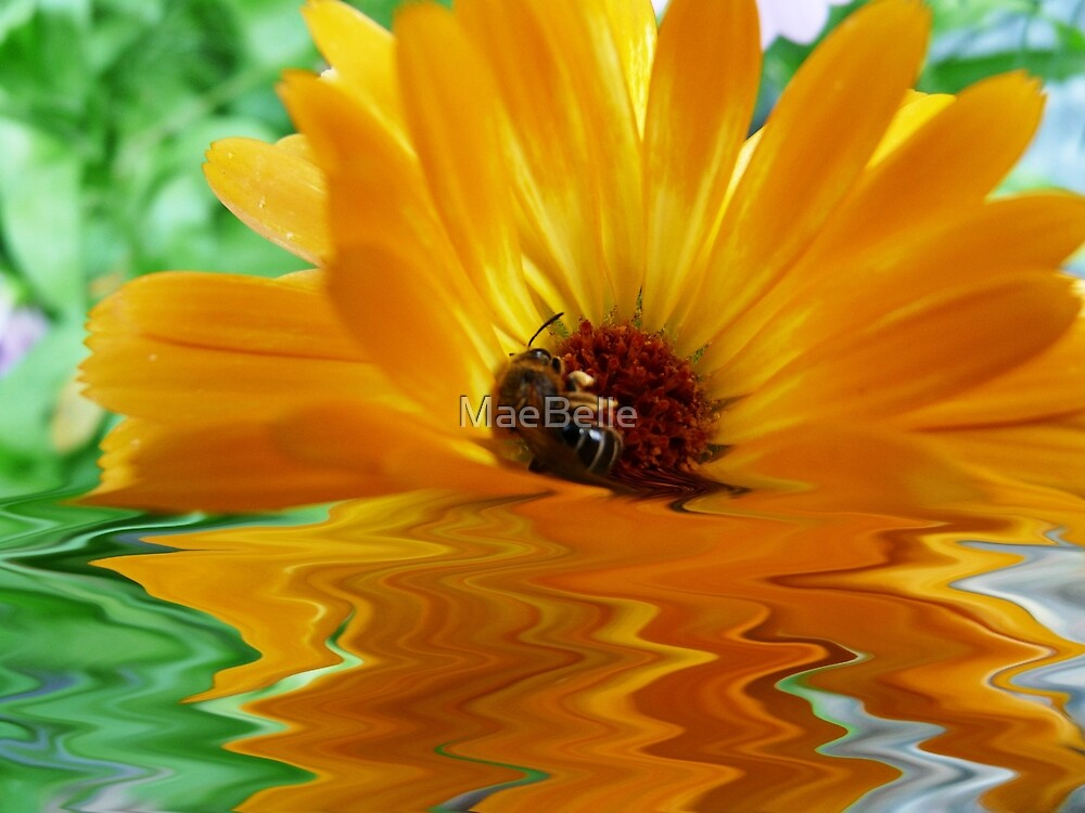 Floating Flower and Bee by MaeBelle