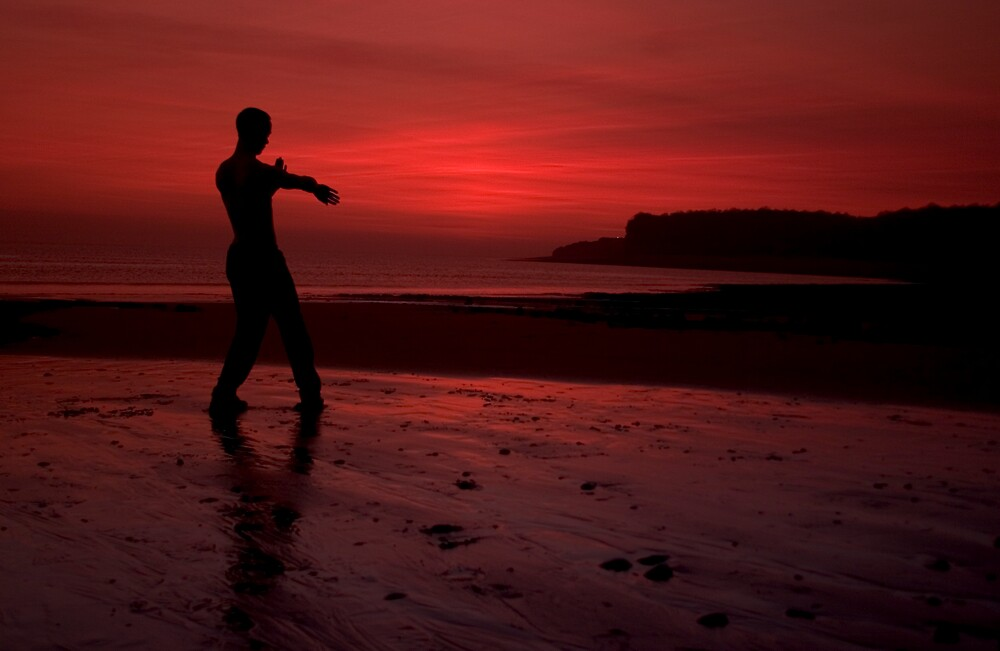 Wing Chun by waltography