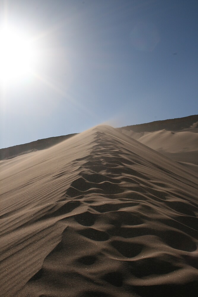 Sand Dune by Thomas Entwistle