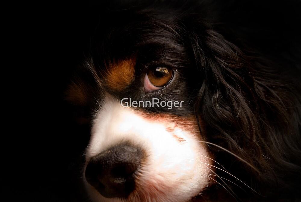 Charlie by GlennRoger