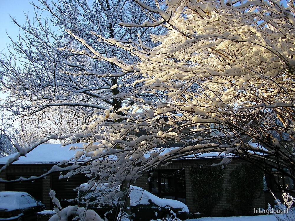 snowy weather by hilarydougill