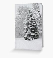 Snowy Tree Greeting Card