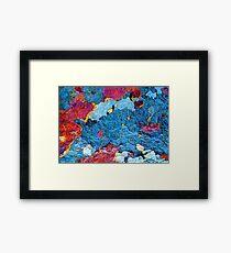 Infrared Satellite Image Framed Print
