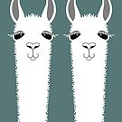 LLAMA TWINS by Jean Gregory  Evans