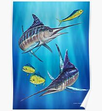 Double Trouble - Striped Marlin & Mahi Mahi Poster