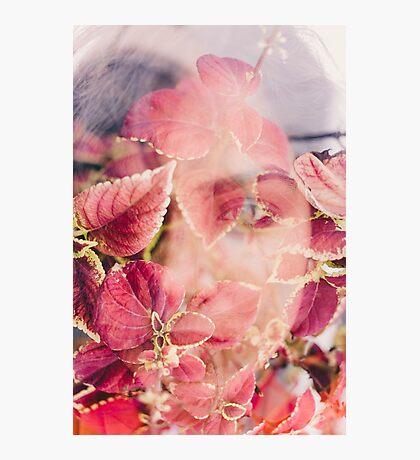 beneath the leaf Photographic Print