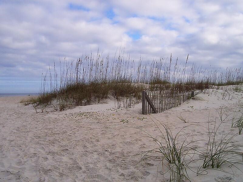 Dunes by garain