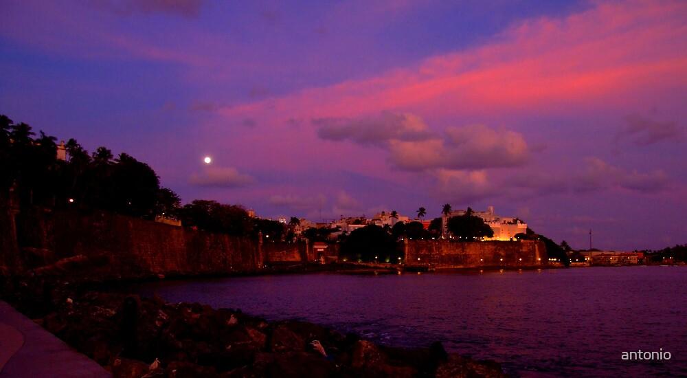 A Beautiful Night by antonio
