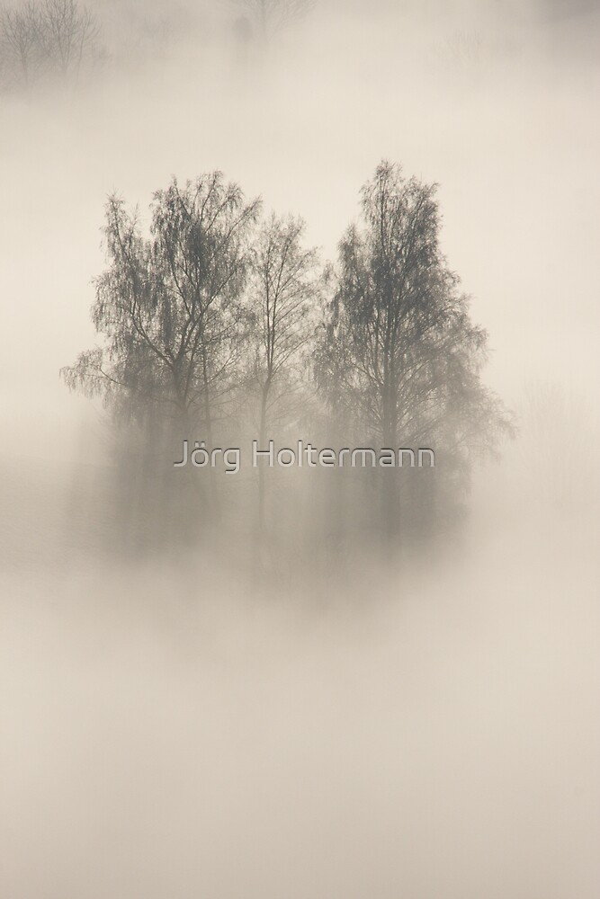 Shrouded in mystery  by Jörg Holtermann