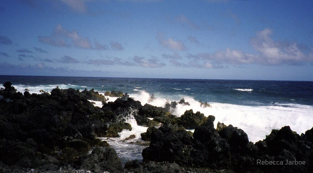 The Maui Collection #3 by Rebecca Jarboe