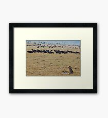 After the Kill Framed Print