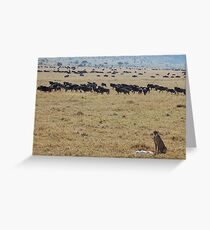 After the Kill Greeting Card