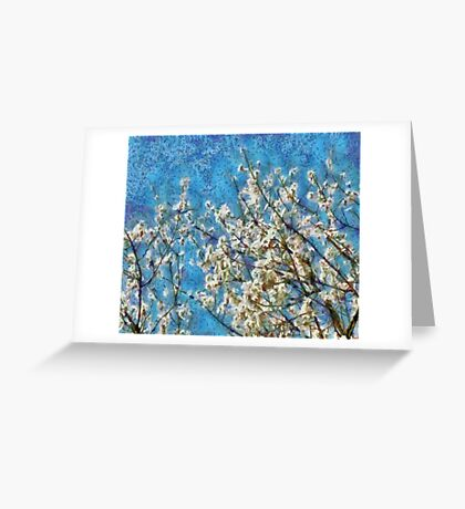Blossom and Blue Sky In Monet Style Greeting Card