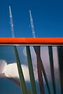 Grass Cranes by Mark Higgins