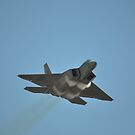 F22 Raptor False Beard,Avalon Airshow,Australia 2017 by muz2142