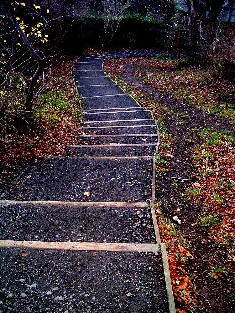 Path by Puffling