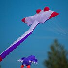 Awesome kites by indiafrank